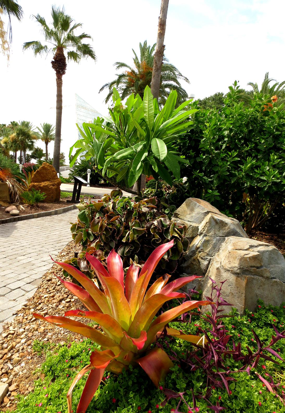 Tropical Texana: OTHER TROPICAL GARDENS: A VISIT TO ... on Tropical Backyard  id=17858