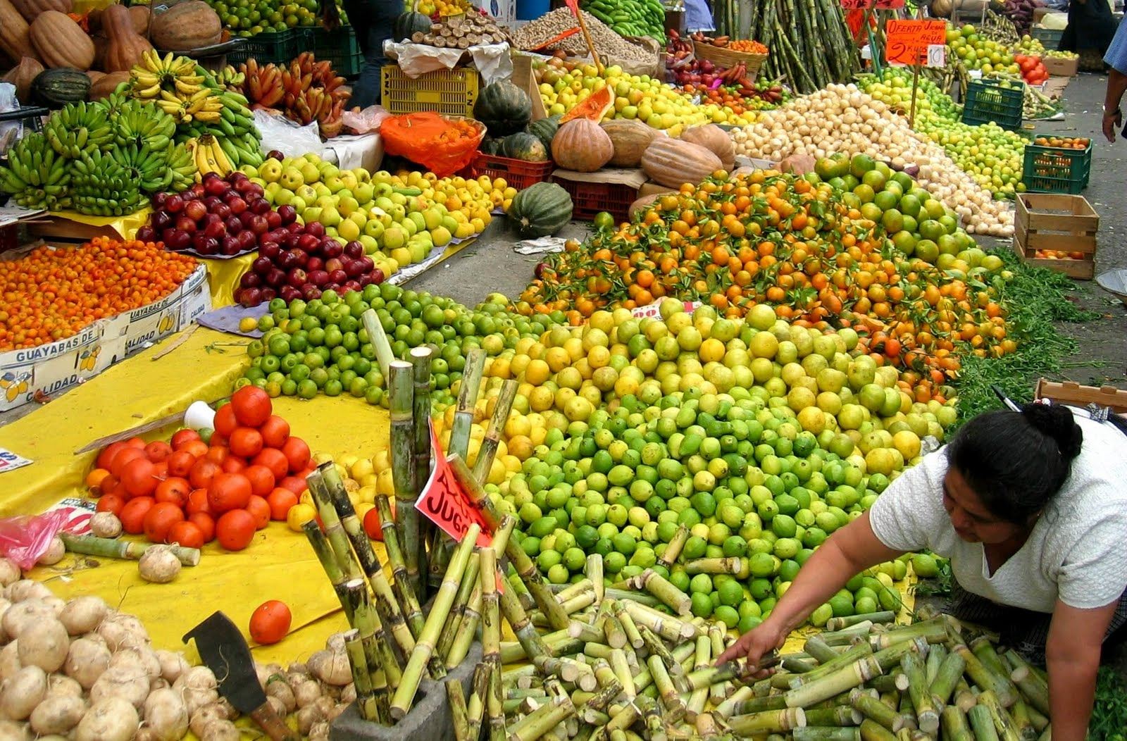 City Whole Sale Foods
