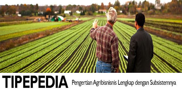 Pengertian Argibisnis Lengkap Subsistem Agribisnis yang Menunjangnya