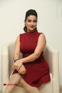 Telugu Tollywood Anchor Manjusha Pos in Red Short Dress  0085.JPG