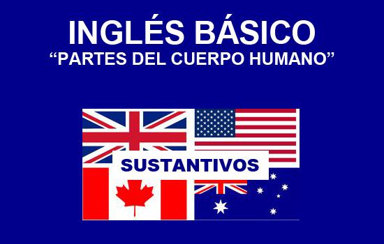 Ingles basico para poder viajar: Partes del cuerpo humano en inglés