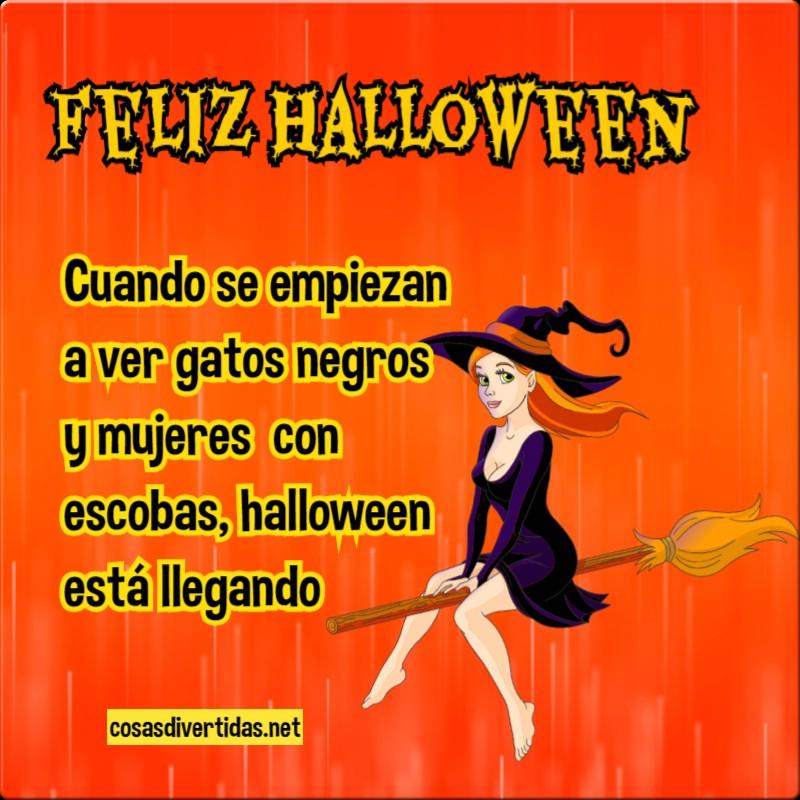 Halloween Imágenes Con Frases Divertidas Cosas Divertidas