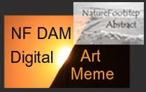 NF Digital Art & Photo  Meme