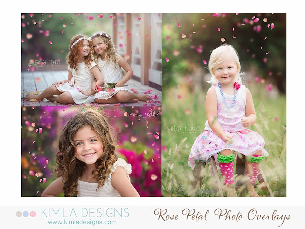 Photo Overlays for Photographers Buy more and Save now | Freebie Fairy Dust Overlay | photography design | kimla designs