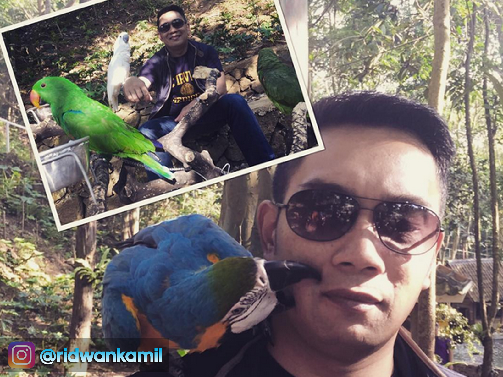 Taman Burung di Dago Giri