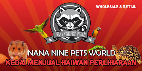 NANA NINE PETS WORLD SDN BHD: Note : Diseases & Infections