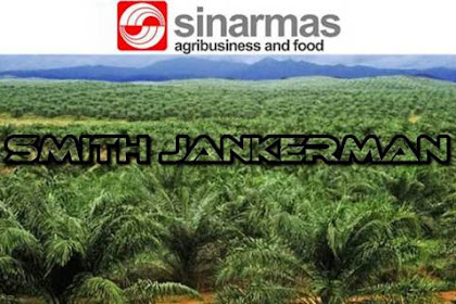 Lowongan PT. Sinarmas Agro Pekanbaru Juli 2018