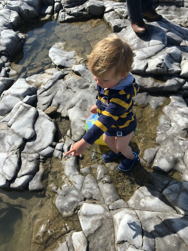Ogmore-by-sea-a-toddler-explores-toddler-in-rockpool-pointing-at-something-out-of-view