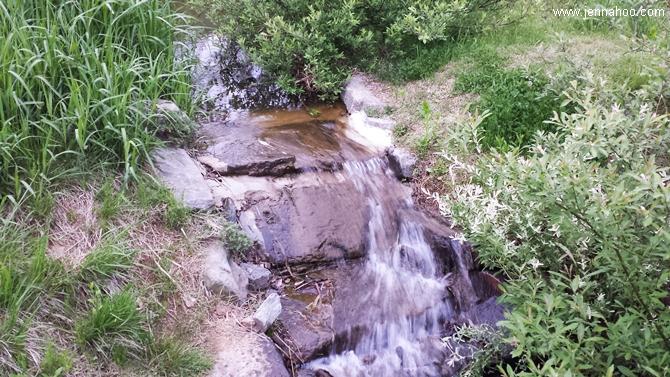 Bucheon Natural Ecological Park (부천 자연상태 공원)