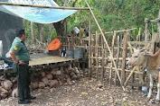 Pemerintah Kel.Putabangun Dor To Dor Ingatkan Warga Untuk Kandangkan Ternaknya