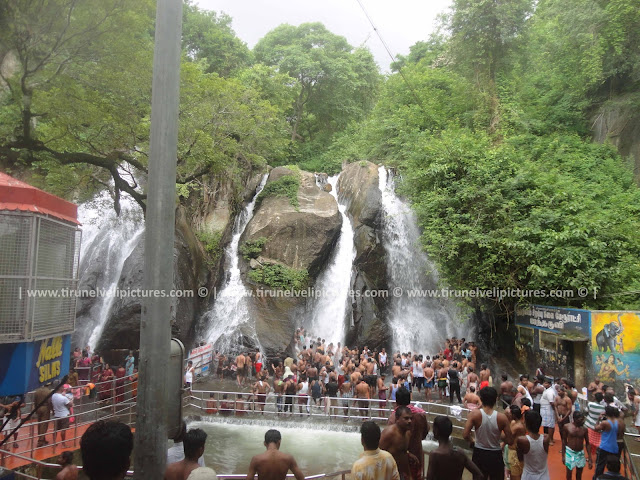 Five Falls,Courtallam, Tamil Nadu 627802, India - © www.tirunelvelipictures.com ©
