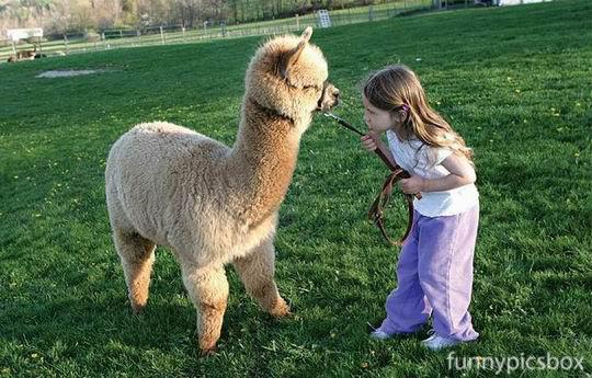 Kids+and+Animals+Best+Friends+0011.jpg
