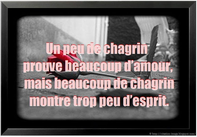 Movie Love Quotes Citations De Films Chagrin Damour