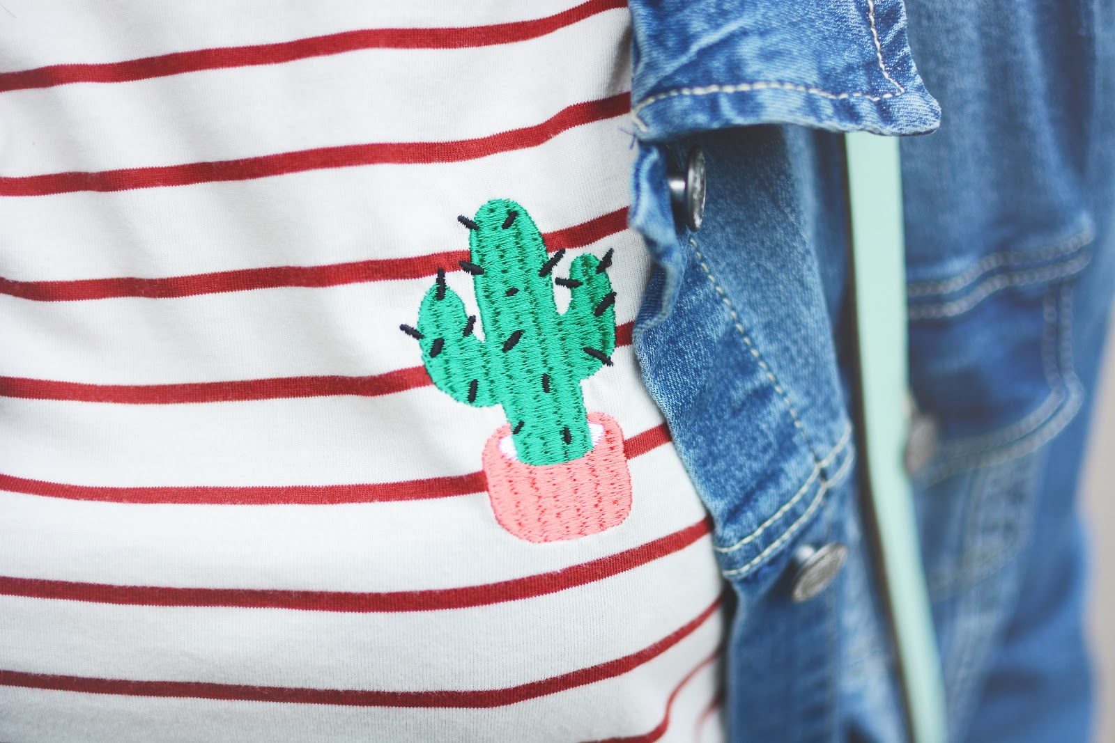 cactus embroidery tshirt