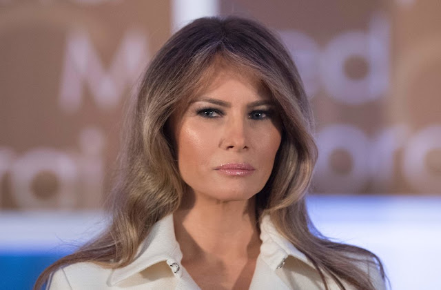 Melania Trump furious after being blindsided by report of Trump Stormy daniel payment: Report