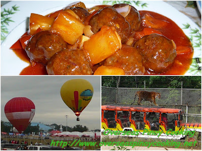 Sweet and Sour Meatballs, The Clark and Zoobic Adventure