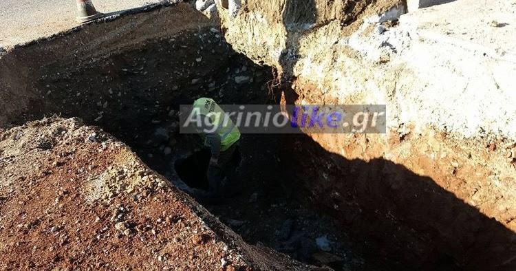 Αποτέλεσμα εικόνας για agriniolike βλάβη