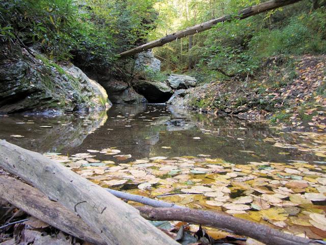 Pool and cascade along Kelly's Run Creek