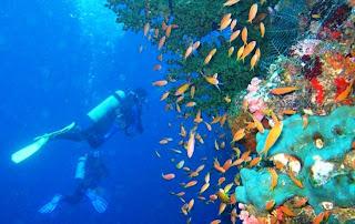 Tempat Wisata di Sulawesi Selatan - Taman Laut TakaBonerate