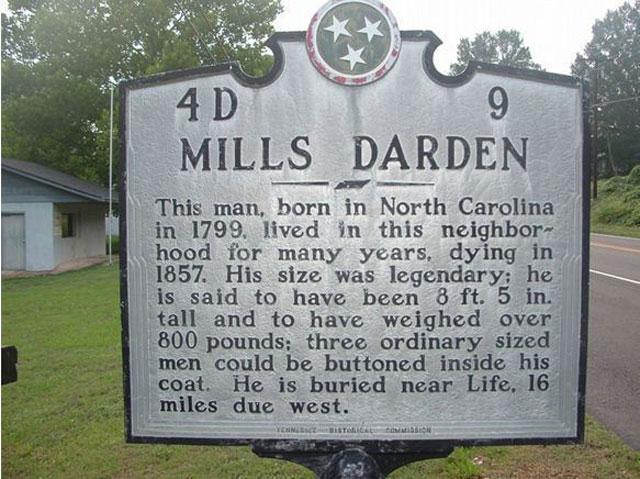 Rahasia Tubuh Raksasa Mills