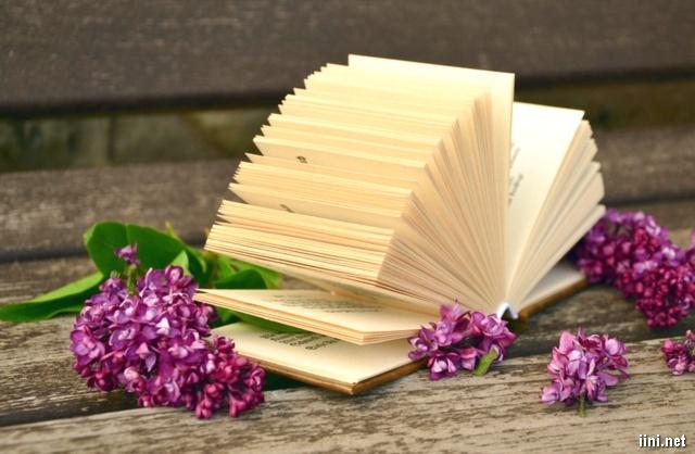 hoa tím và sách