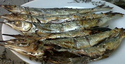 Ikan Roa