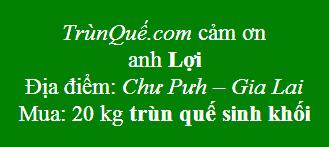 Trùn quế Chư Pưh - Gia Lai