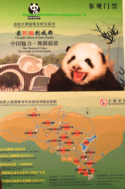 Entry ticket, Chengdu Research Base of Giant Panda Breeding, Chengdu, Sichuan, China