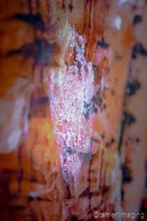 Photograph of a fingerprint on a desert landscape photo print by Cramer Imaging