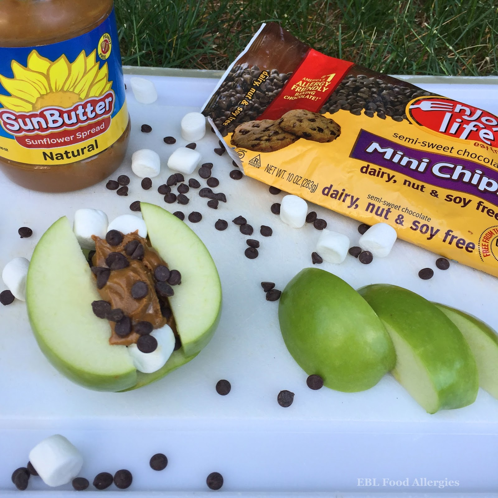 Allergy friendly campfire recipes dairyfree nutfree ebl food allergy friendly campfire recipes forumfinder Images