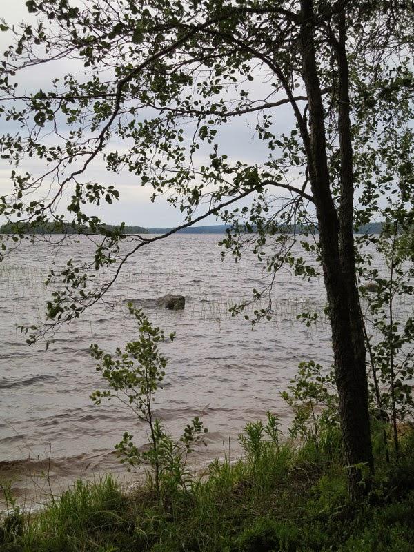 järvi lake keski-suomi