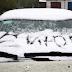 Якщо навіть природа проти: Після ураганів Москву засипало снігом (фото, відео)