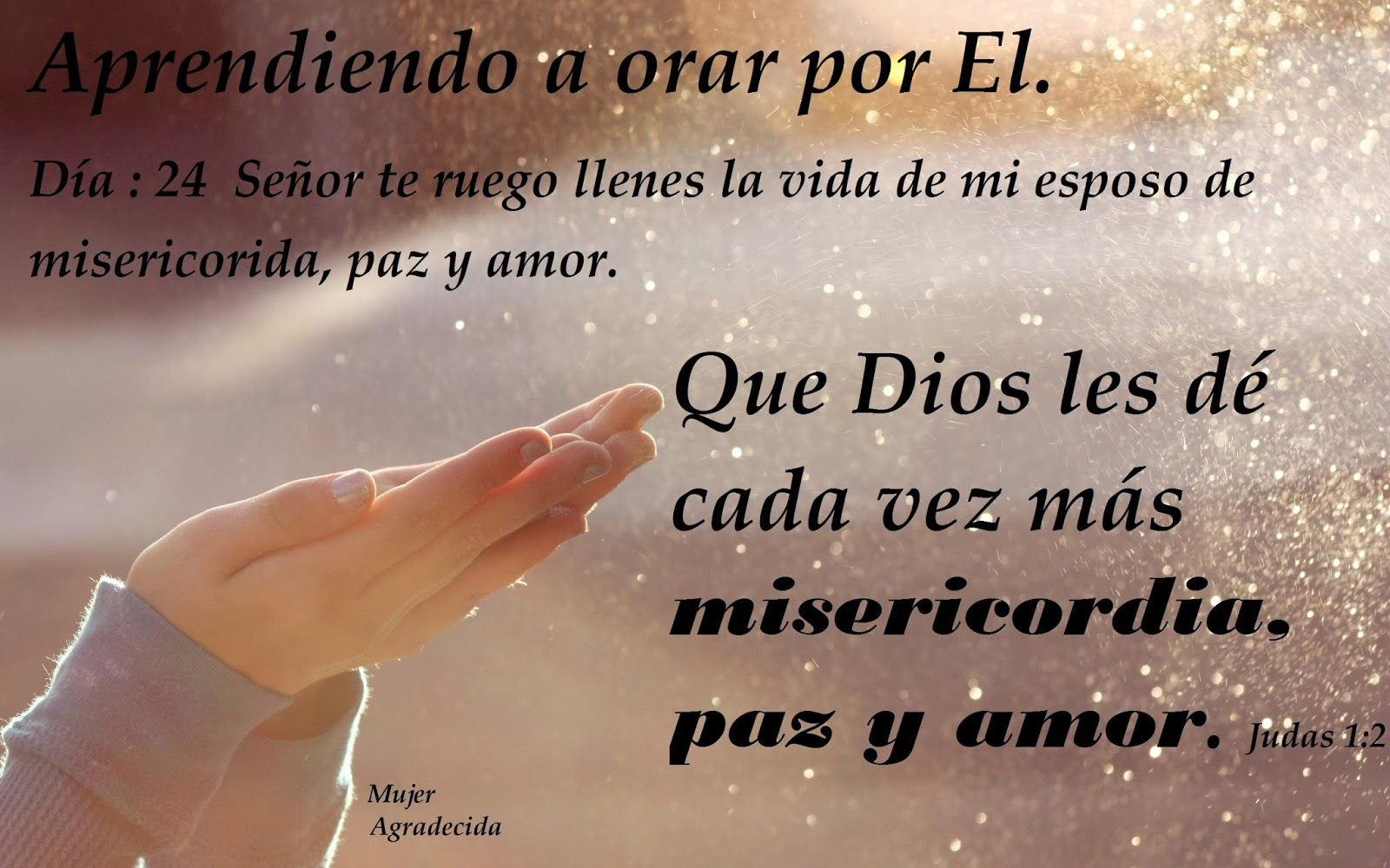 Te Amo Mensaje Escrito En Arena De Oro Foto De Archivo: El Cristiano: Misericordia,amor Y Paz