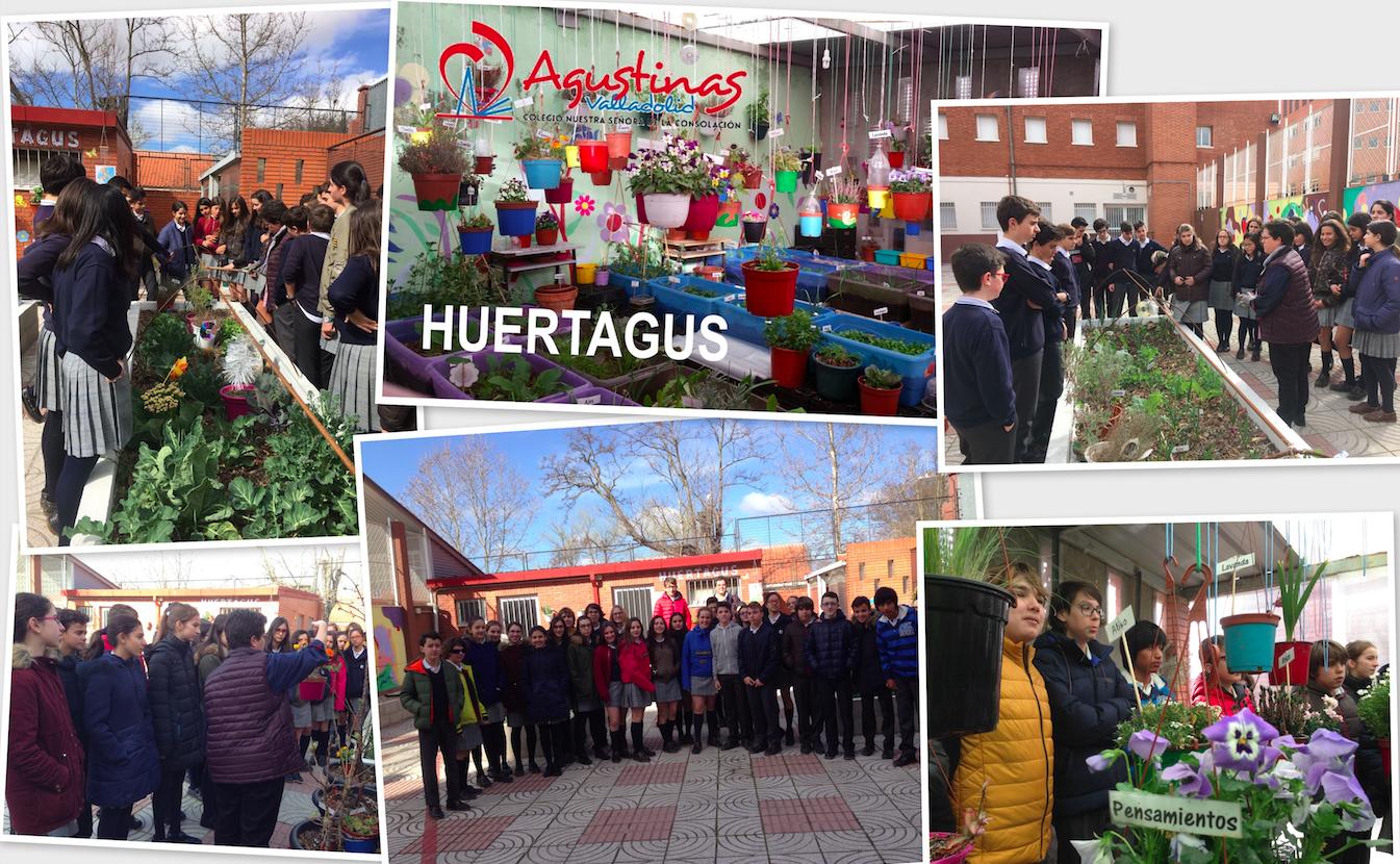 Agustinas Valladolid - 2017 - ESO 2 - Huertagus