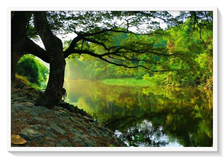 RIVERS OF BABYLON: Você sabia que essa música da era disco é o Salmo 137 da Bíblia?