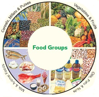 food classifications and the diets of Diet manual for long-term care residents guide in prescribing diets, an aid in planning regular and therapeutic diet menus, and as a food groups foods included foods excluded milk all types yogurt none meat and equivalent ground.