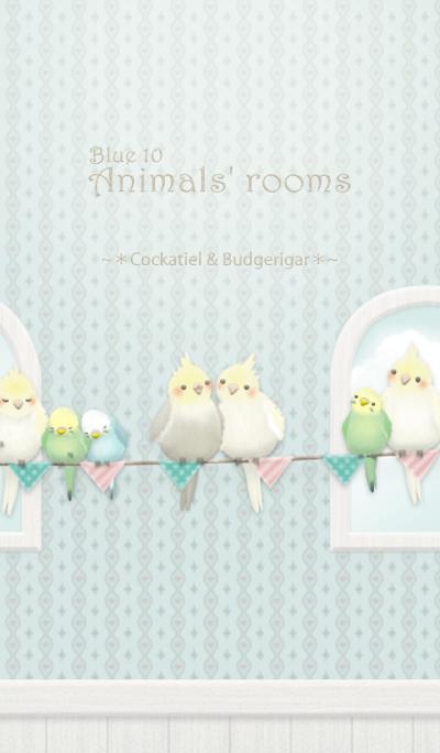 Animals' rooms[Cockatiel&budgie]/Blue10r