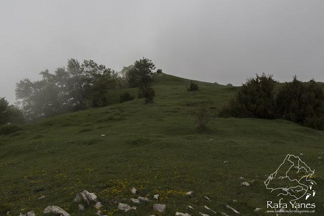 Ruta: Puig Ou (1.300 m) (Els 100 Cims)