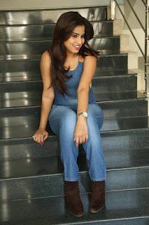 Actress Dimple Chopade Latest Pictures in Jumpsuit at Krishnashtami Success Meet  0049.jpg