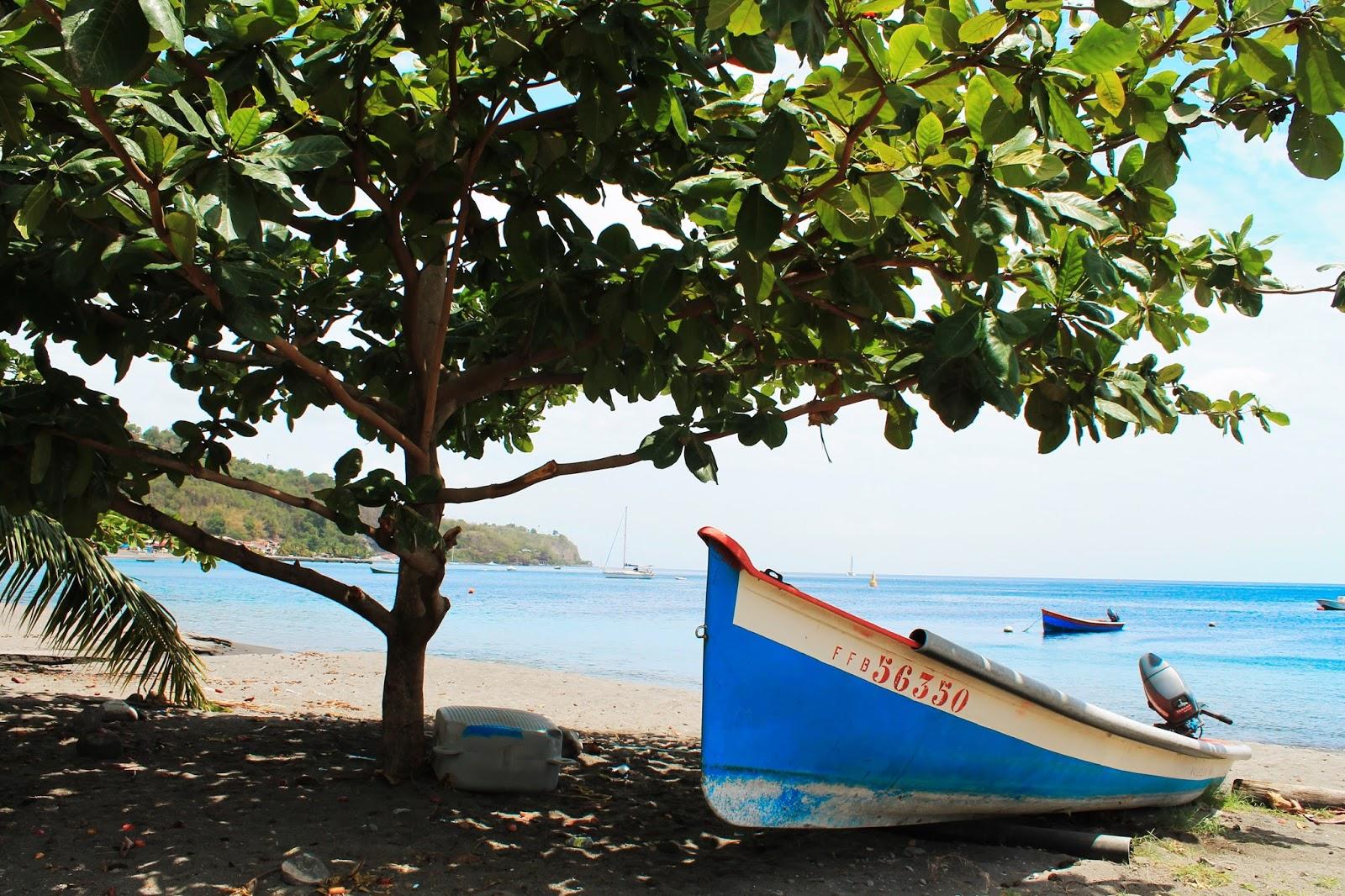 martinique caraibes vacances île dom tom saint pierre visite