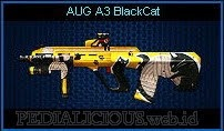 AUG A3 BlackCat