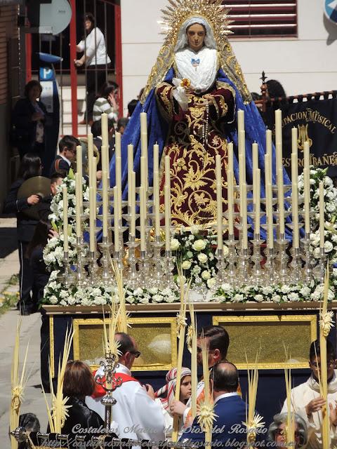 Crónica de la Semana Santa: Salida de la Borriquita y Virgen de la Soledad. parte V