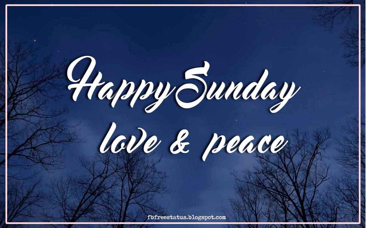 Happy Sunday love & peace.
