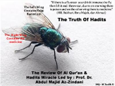 Keajaiban Hadits Tentang Seekor Lalat Dibuktikan Dengan Penelitian