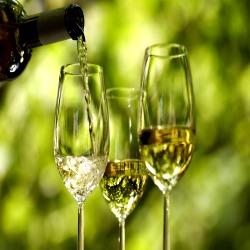 Vinho branco ligado a um risco mais elevado de determinados melanomas