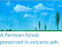 https://sciencythoughts.blogspot.com/2012/02/permian-forest-preserved-in-volcanic.html