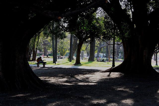 Paisaje arco de árboles y gente en la plaza'title=