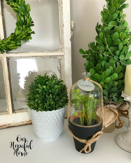 faux greenery boxwood herb cloche topiary mantel decor