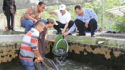 Program 10 ribu kolam ikan di Banyuwangi.