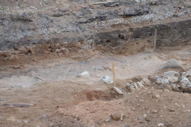 как поучаствовать в археологических раскопках